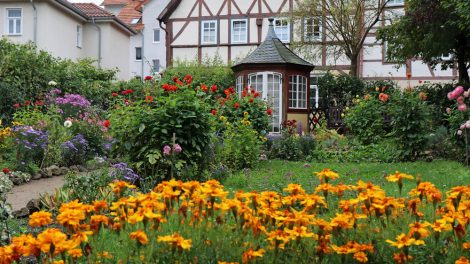 Hinter dem Bachhaus befindet sich ein kleiner Bauerngarten