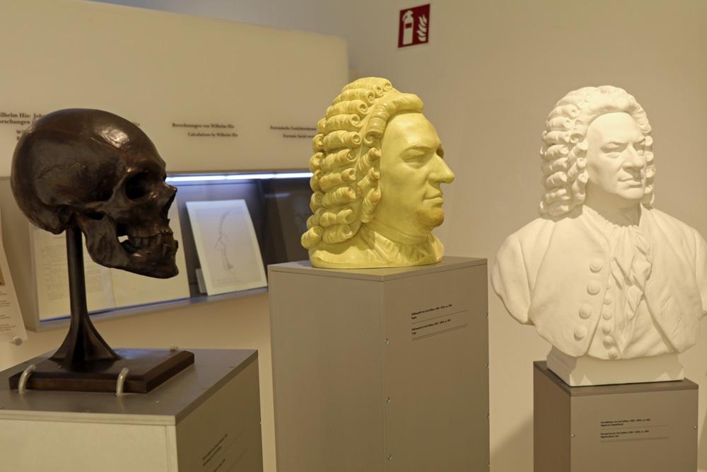 Verschiedene Bach-Büsten und ein Abguss seines Schädels im Bachhaus in Eisenach