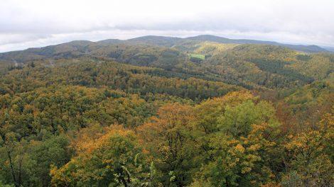 Von der Wartburg kann man weit über den Thüringer Wald blicken