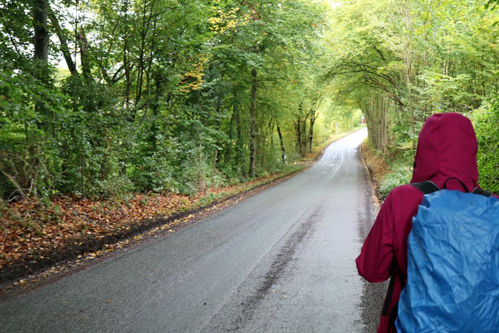 Nicht schön zum Wandern - Leider verläuft der erste Abschnitt des Lutherweges auch entlang einer Straße