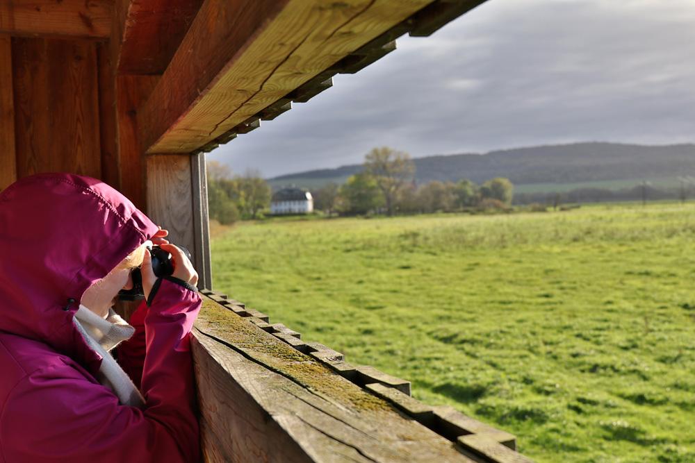 Ein Unterstand zur Vogelbeobachtung an der Werra