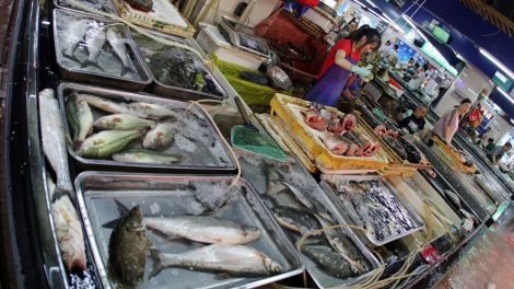 Markt in China mit Fisch