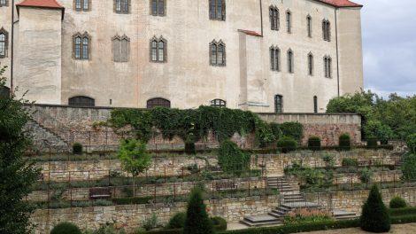 Im Sommer blühen im Rosengarten von Schloss Hartenfels in Torgau zahlreiche Blumen