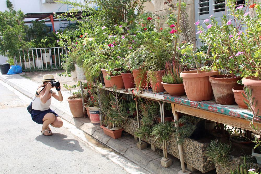 In den schmalen Gassen in Nikosia stehen reichlich Pflanzen