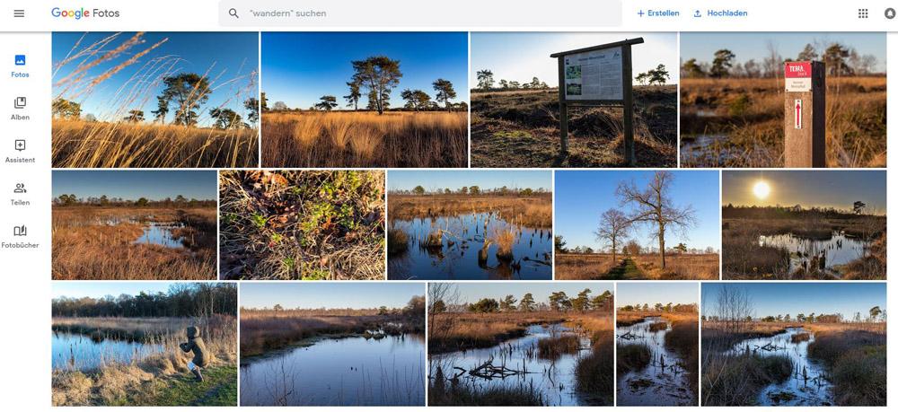 Cloudanbieter wie Google Photos sind sehr praktisch wenn es darum geht Fotos zu organisieren und zu verwalten