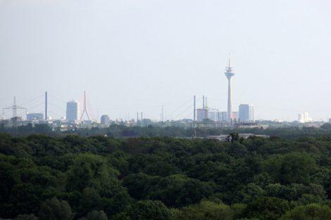 Bis nach Düsseldorf reicht der Blick von der Halde