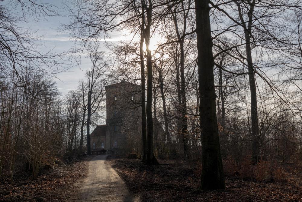 Diedrichsburg im Wildschweinpark Melle bei Osnabrück