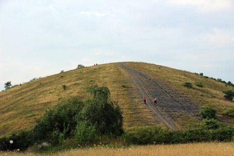 Die letzten Meter bis zum Gipfel der Halde Haniel