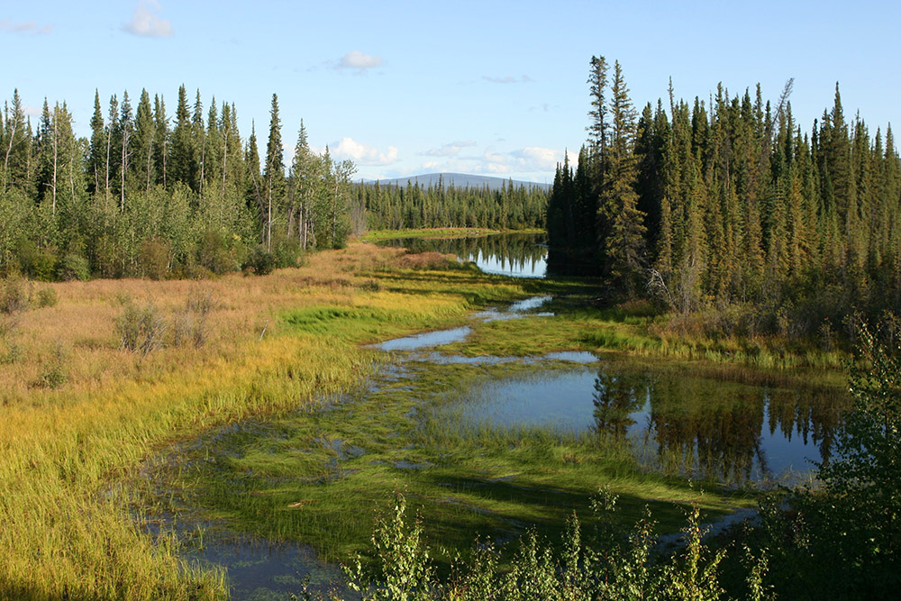 See am Dempster Highway