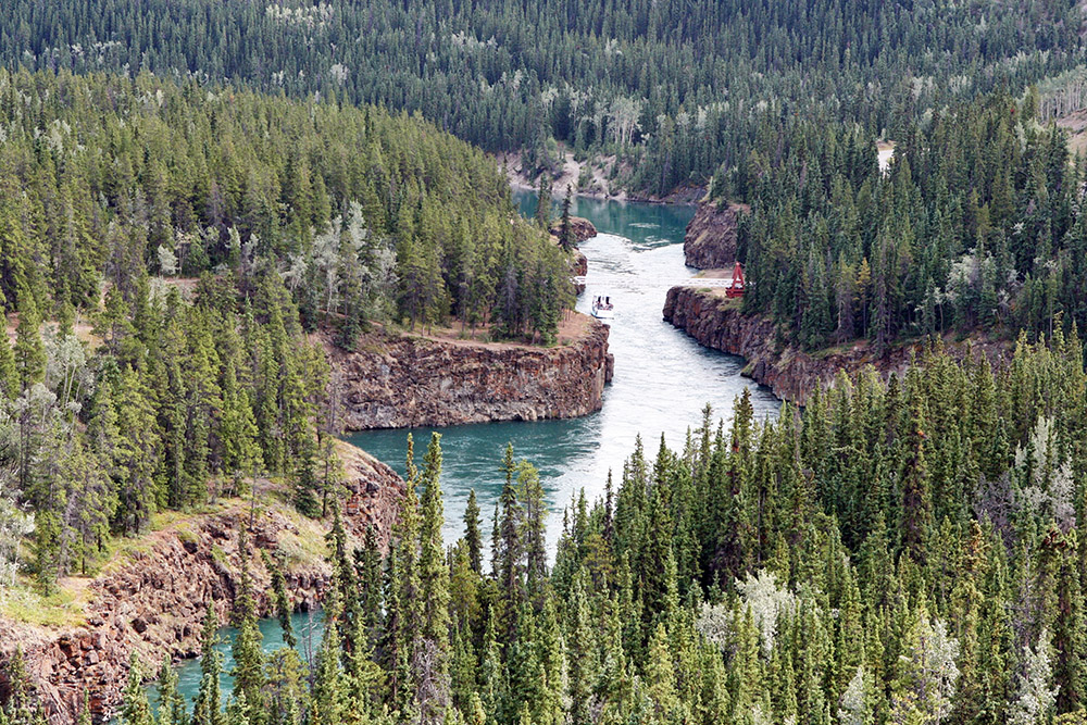 Der Yukon mit den White Horse Rapids in Whitehorse