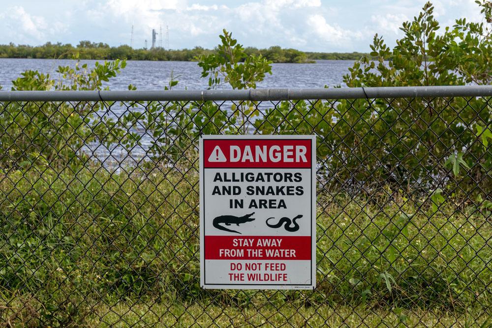 Auf dem Gelände des Kennedy Space Centers in Florida leben Alligatoren und andere wilde Tiere.