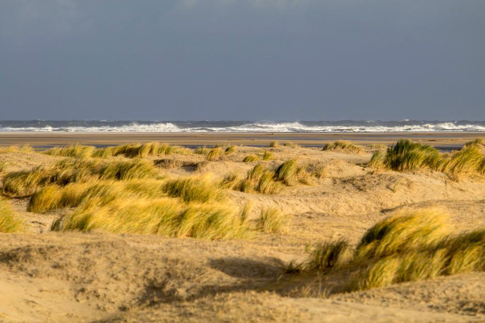 Die Dünen auf Borkum sind im Winter oft fast menschenleer.