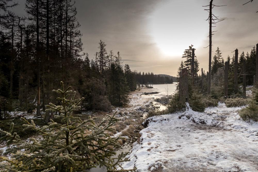 Wandern um den Oderteich im Harz