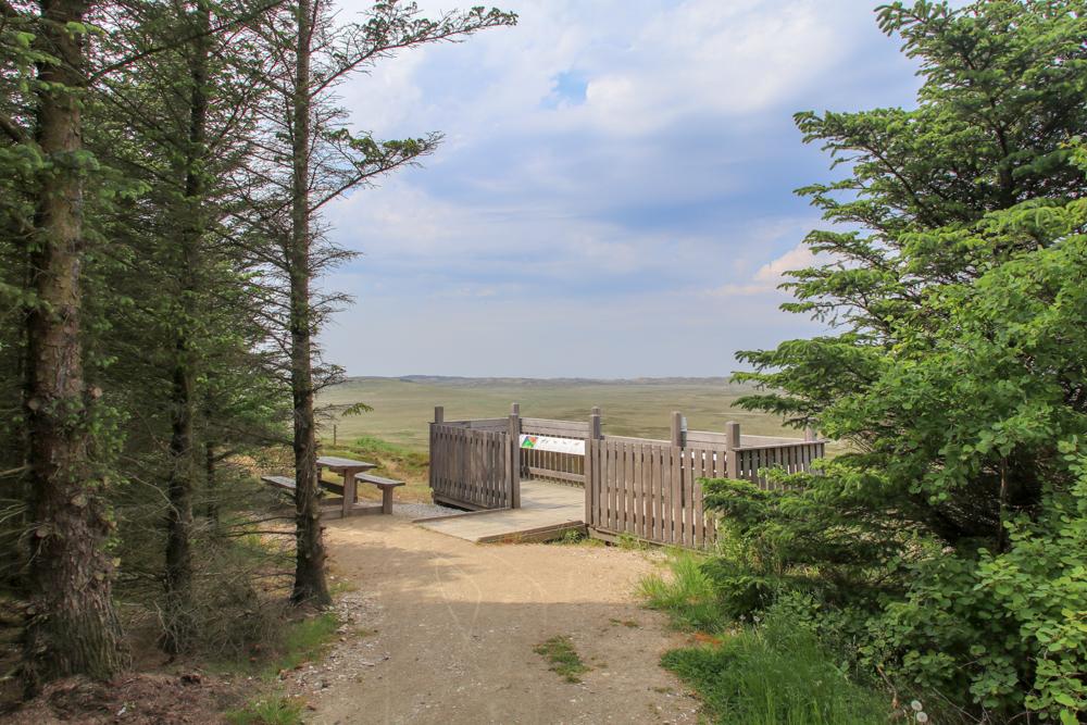 Nationalpark Thy Aussichtsplattform
