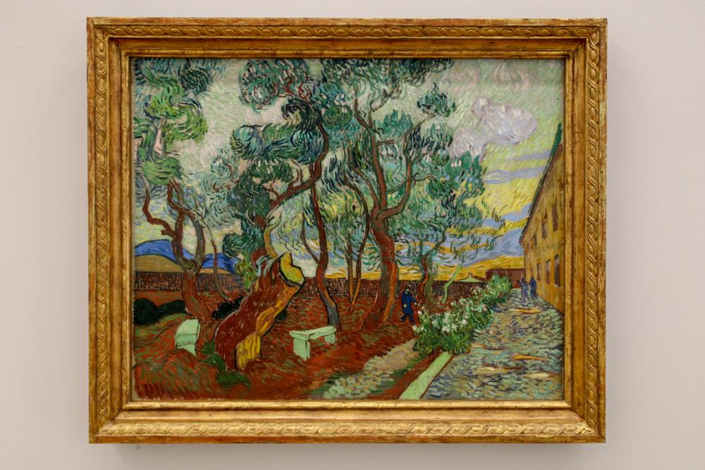 """""""Der Garten des Hospitals von Saint-Rémy"""" von Vincent van Gogh"""