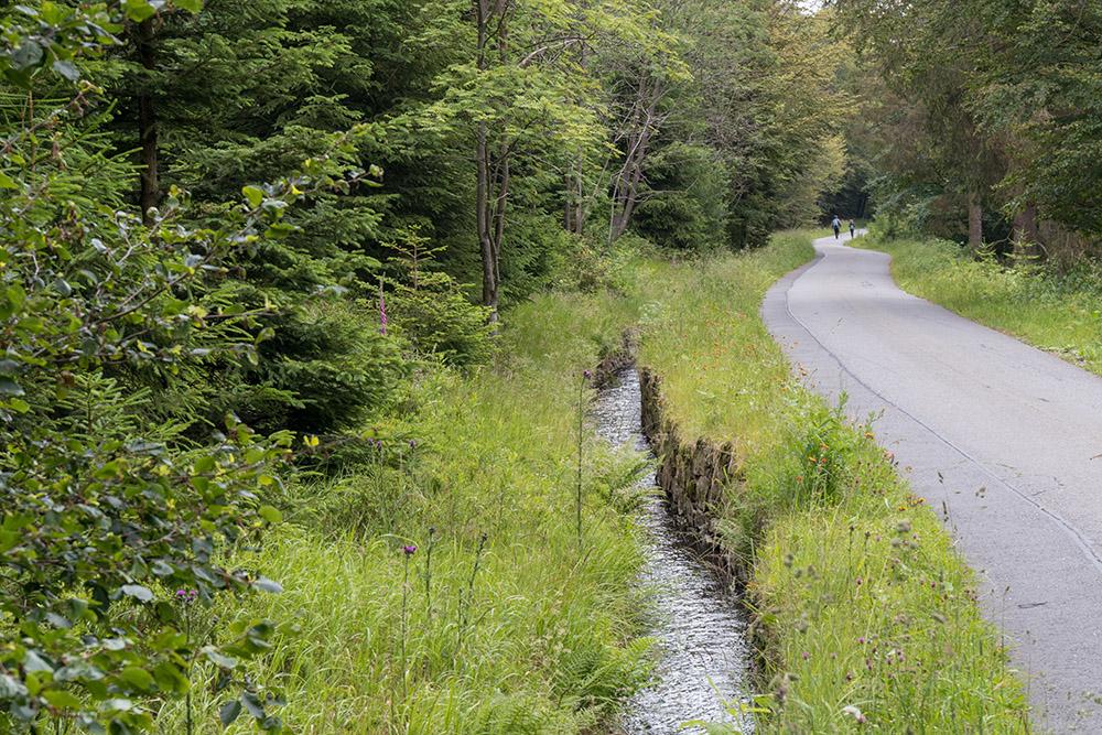 Wandern am Rehberger Graben im Harz