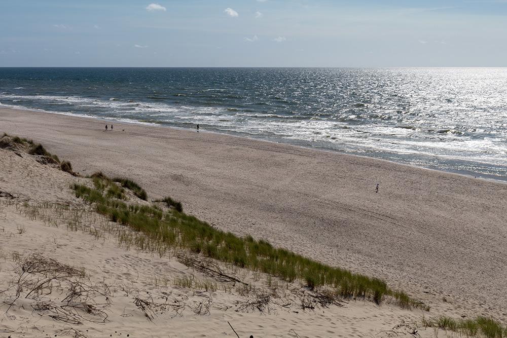 Der Strand von Holmsland Klit, in unmittelbarer Nähe des Leuchtturms Lyngvig Fyr