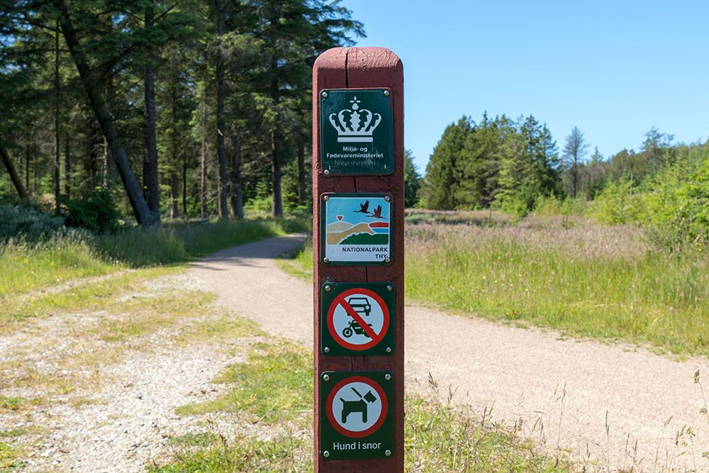 Wer wandern möchte, findet im Nationalpark Thy viele verschiedene Wege