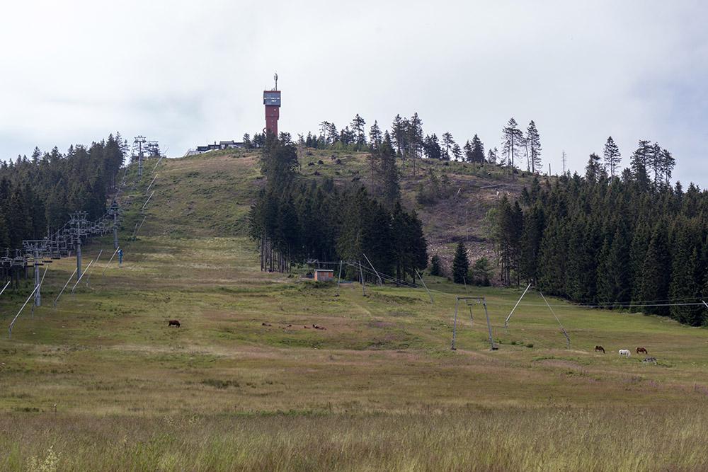 Wurmberg Gipfel