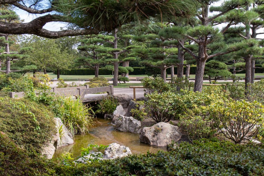 Japanischer Garten im Nordpark Düsseldorf