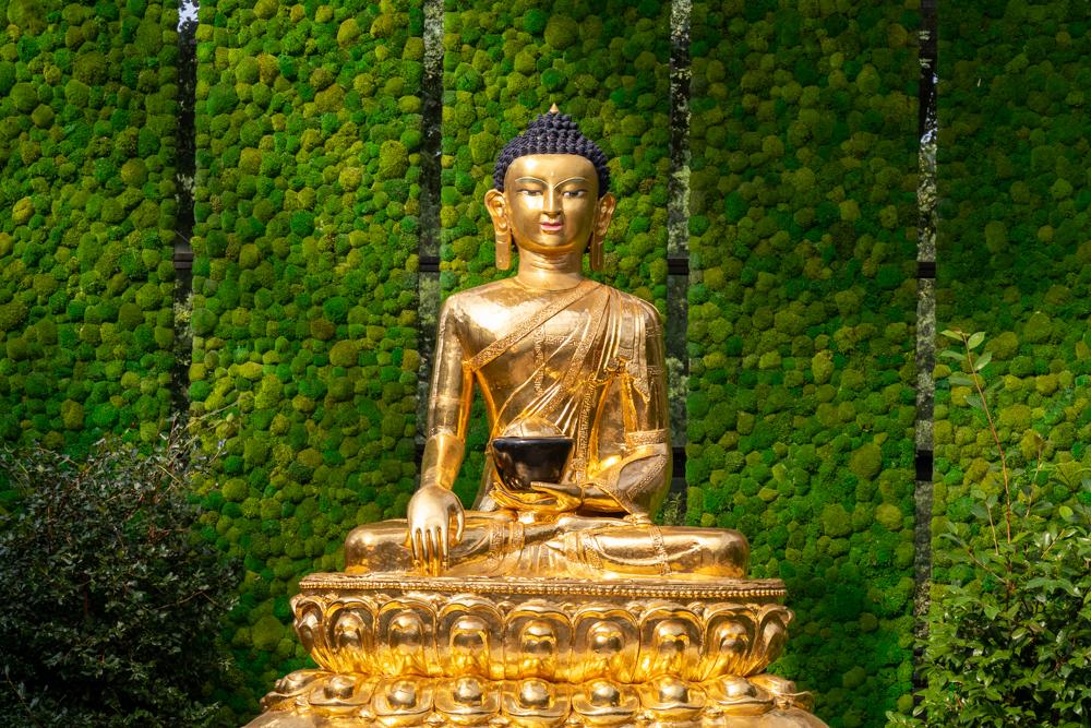 Friedensbuddha Botanika Bremen