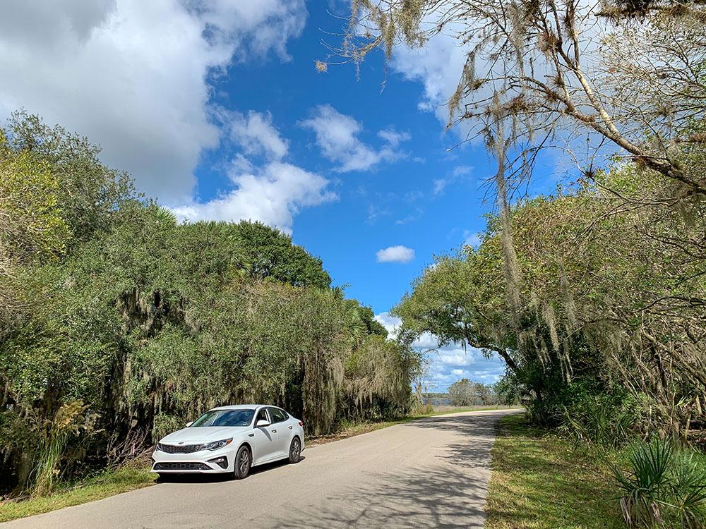 Mit dem Auto durch den Myakka River State Park Florida