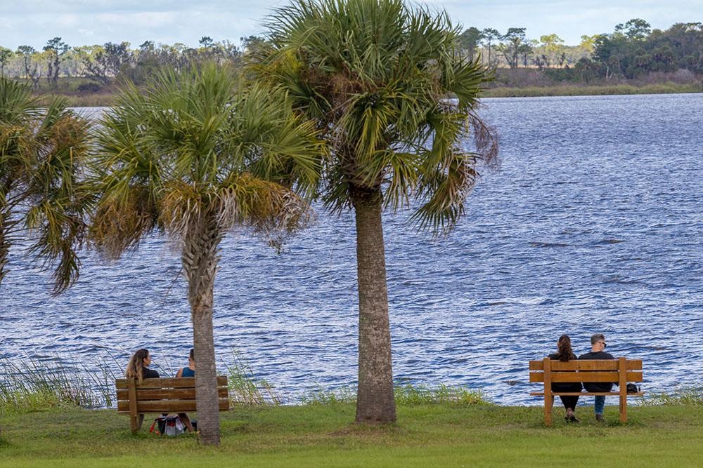 Bänke am Ufer eines Sees im Myakka River State Park Florida