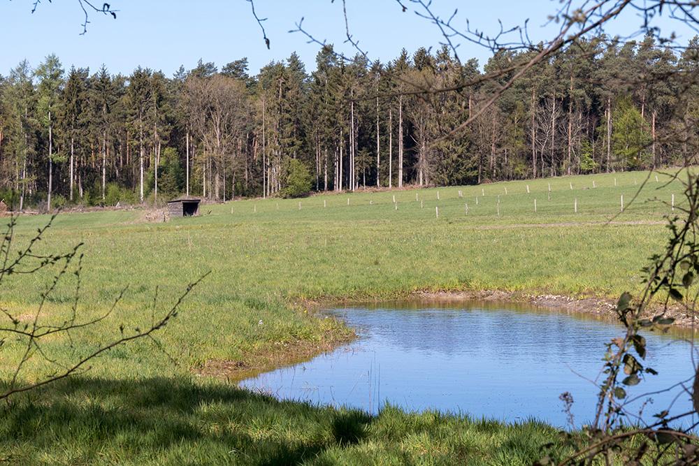 Terra Track Wandern im Osnabrücker Land
