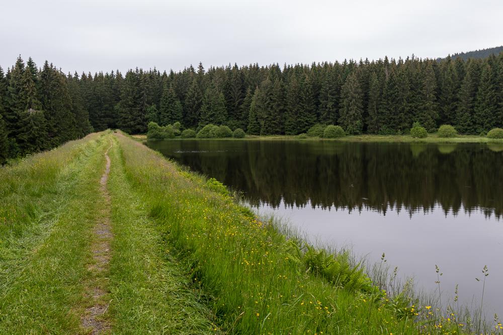 Zankwieser Teich Harz