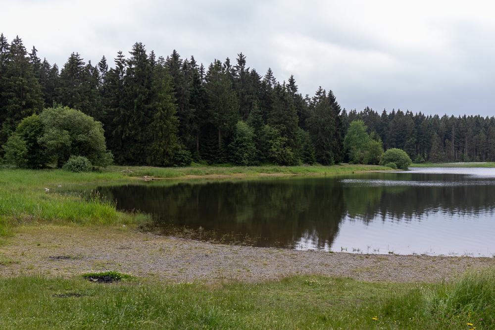Kiefhölzer Teich Harz